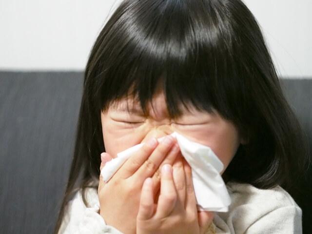 花粉症 対策