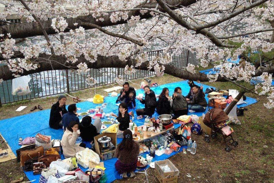 大阪城公園お花見