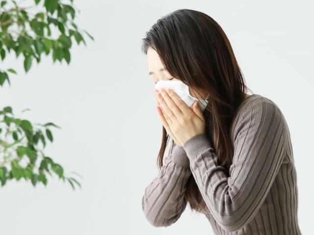 ブタクサ 花粉