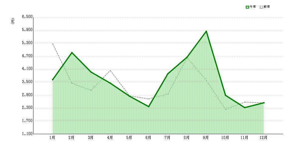 年間の電気代グラフ