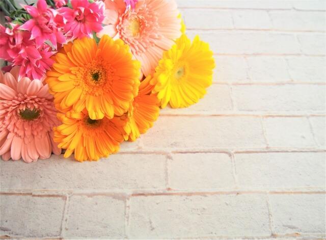 11月誕生花